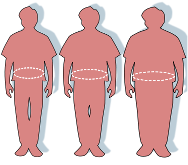 The Shape of Your Body and Body Mass IndexThe Shape of Your Body and Body Mass Index