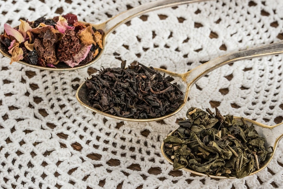 Difference between Green Tea and Other Teas: Read to be Surprised