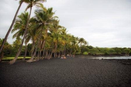 Punalu'u Beach, Hawaii, United States
