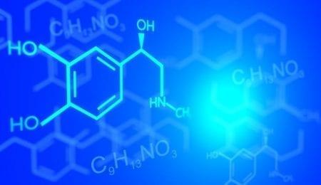 A New Molecular Programming Language: CRN ++