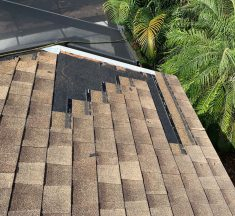 Tips for Maintaining a Healthy Roof
